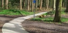 Afbeelding bij het nieuwsbericht: Fotografie Cornelia-Stichting